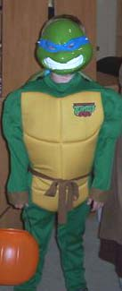 My Teenage Mutant Ninja Turtle Teacher