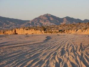 Ocotillowells Sand Wash